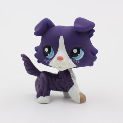 Littlest Pet Shop LPS #1676 Purple White Collie Dog Puppy Blue Eyes Kids Gift