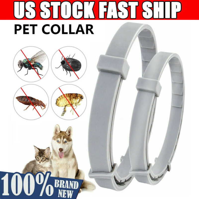 Adjustable Flea and Tick Collar 8 months Protection Anti Ins