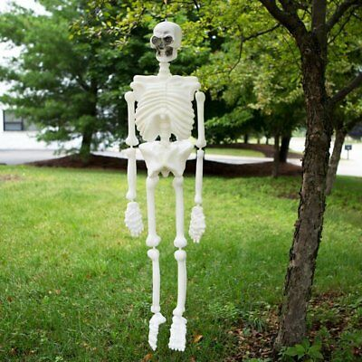Life Size Plastic Skeleton - Skeleton Plastic Life Size