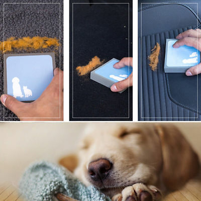 Pet Puppy Cleaning Brush Dog Cat Hair Foam Carpet Fur Remover Cleaner Brushes