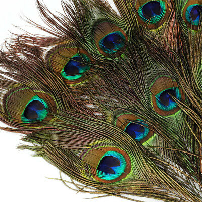 Peacock Feather Costume Tail (10pcs New Natural Peacock Feather Tail Eye Decor for Costume Mask Xmas 8-12