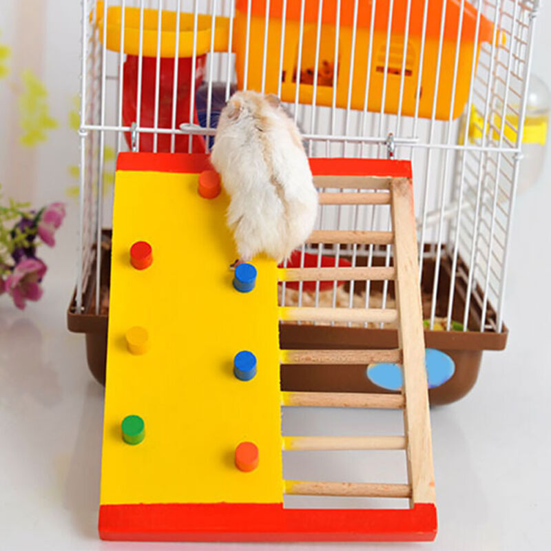 Climbing Ladder Play Rest Colorful Hamster Toy Squirrel Non Toxic Rat Wooden Fun
