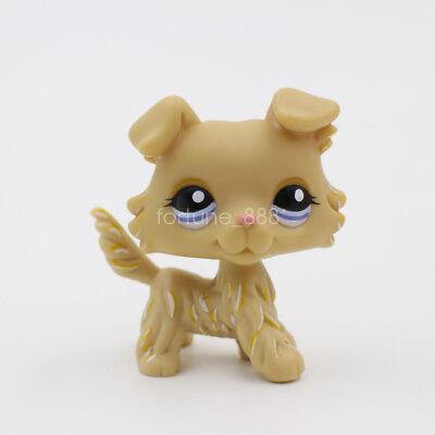 Littlest Pet Shop LPS #1194 Collie Dog Puppy Blue Eyes Kids Toy Birtheday Gift
