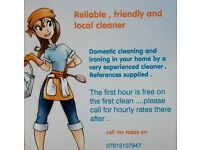 Local domestic cleaner has vacancies on Mondays and Wednesday's