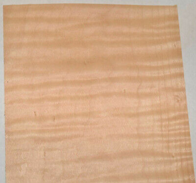 Curly Maple Raw Wood Veneer Sheets 5 X 41 Inches 142nd 7685-1