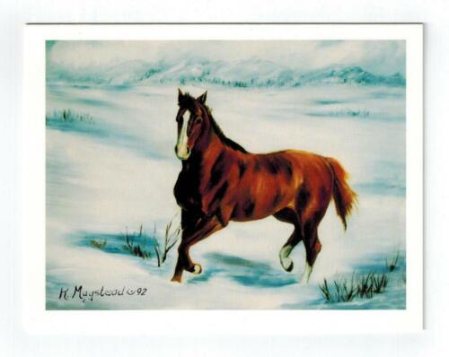 New Brown Horse In Snow Notecard Set - 12 Note Cards By Ruth Maystead HOS-2