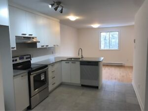 Newly renovated 4 1/2 in heart of Saint-Henri