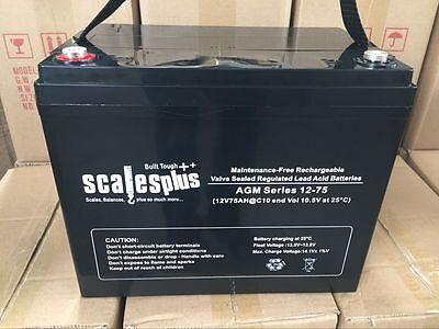 12V 75Ah Rechargeable Battery Valve Regulated Sealed Lead Acid 20HR VRLA SLA AGM Valve-regulated Lead