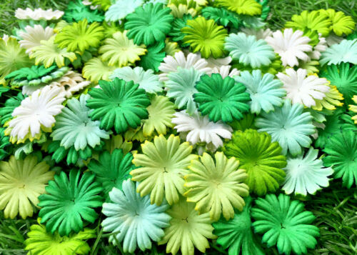 50+Petals+Daisy+Flower+Mixed+Green+Tone+White+Mulberry+Paper+Craft+Wedding+Card+