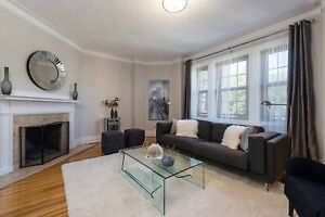 Stunning 1 bedroom apartment for rent in Montreal!