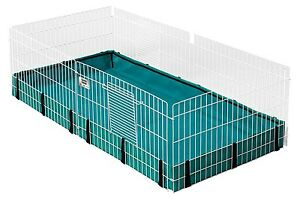 LOOKING FOR A GUINEA PIG CAGE
