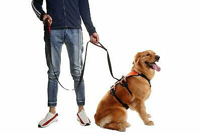 6FT Long Double Handle Dog Leash Training Lead, Reflective Safety, Double Handle