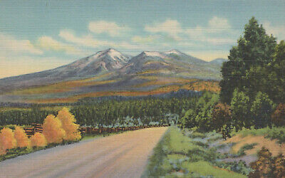 San Francisco Peaks near Flagstaff Navajo Reservation Arizona Postcard Linen