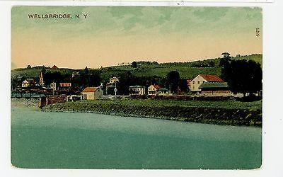 Wells Bridge Ny Antique Unadilla Postcard Pudney Pub 1910S
