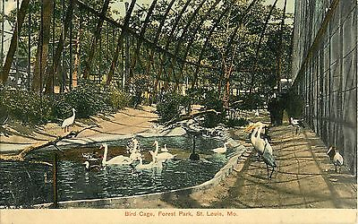 1908 Inside The Bird Cage, Forest Park Zoo, St Louis, Missouri Postcard