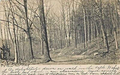 For sale A View Of Bear Hill Road, Winchester, Massachusetts MA RPPC 1905
