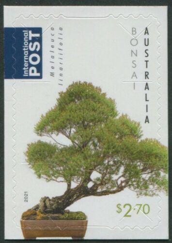 AUSTRALIAN NATIVE BONSAI 2021 - MINT EX-BOOKLET $2.70 INTERNATIONAL POST (G87)