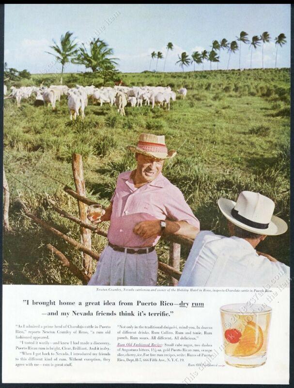 1959 Charolais cattle cow herd photo Puerto Rico Rum vintage print ad