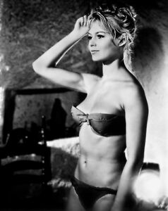 BRIGITTE BARDOT RARE 8x10 PHOTO