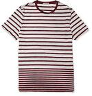 Burberry Brit Men's T-Shirts
