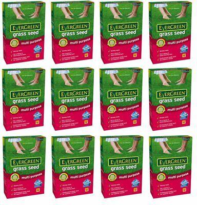 12x MiracleGro EverGreen MultiPurpose Grass Lawn Seed Ryegras 16m2 Coverage 480g