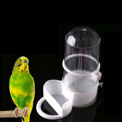 bird pet drinker feeder automatic food waterer clip aviary cage parrot budgie TO