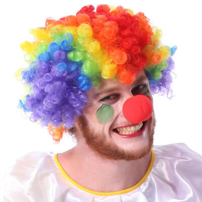 Party Disco Rainbow Afro Clown Hair Football Fan Adult Child Costume Curly - Kids Clown Wig