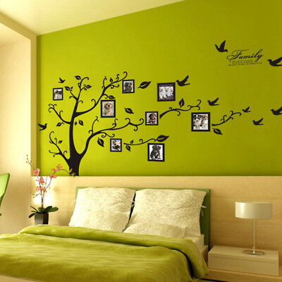 large 3d diy phototree bird pvc wall decal family stickermural art room decor XR
