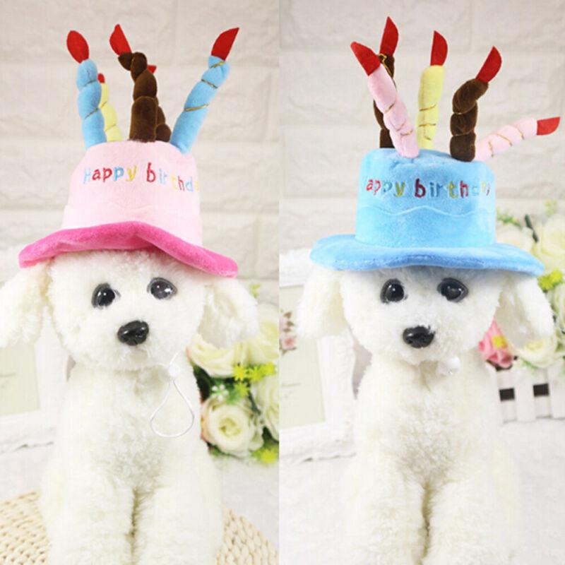 Katze Hund Haustier alles Gute zum Geburtstag Kerzen Hut Cosplay Kostüm Kleid YT