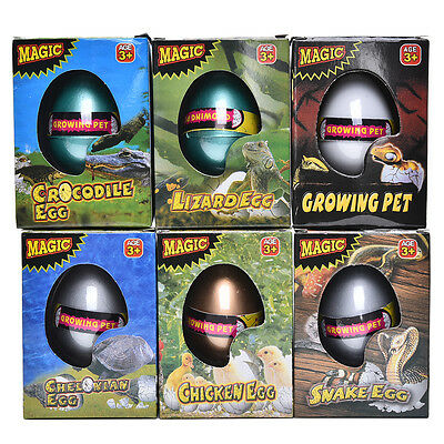 Magic Hatching Dinosaur Egg Growing In Water pets Children Kids Gift Toy Anim OJ (Dinosaur Egg Hatching)