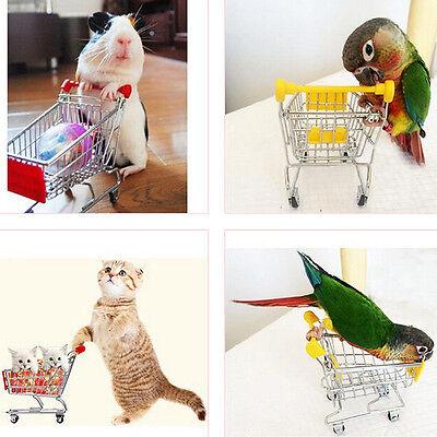 Parrot Bird MINI Supermarket Shopping Cart Kids Toy Intelligence Growth Toy
