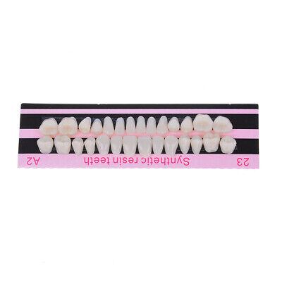 28x 1set Denture Acrylic Resin Full Set Teeth Upper Lower Shade 23 A2 Dental 7