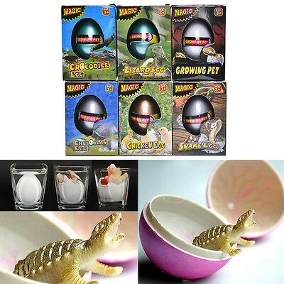 1 Pcs Water Hatching Egg Box Large Expansion Animal Egg Kids Educational Toy EF
