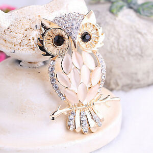 Owl Brooches Bouquet Vintage Wedding  Scarf Pin Up Buckle Broches 9UK
