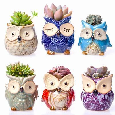 6pcs Claywa Ceramic Owl Succulent Pots Cute Animal Plant Planters 2.75