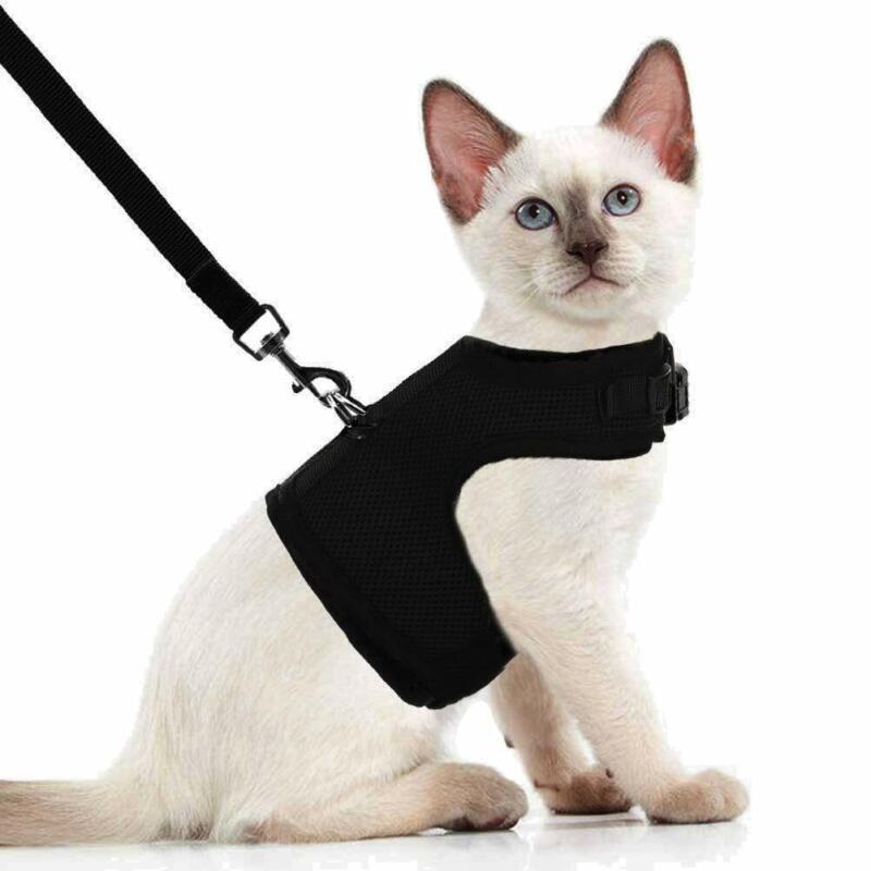 Beijia Escape Proof Cat Vest Harness With Leash - Adjustable