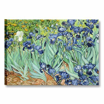 Van Gogh Iris QUADRO SU TELA 50x70 cm STAMPA RIPRODUZIONE ARTISTI FIORI ARREDO