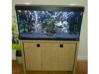 200l fish tank and stand complete set up
