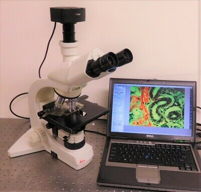 Leica Dmls Trinocular Microscope With 5 Mp Camera System