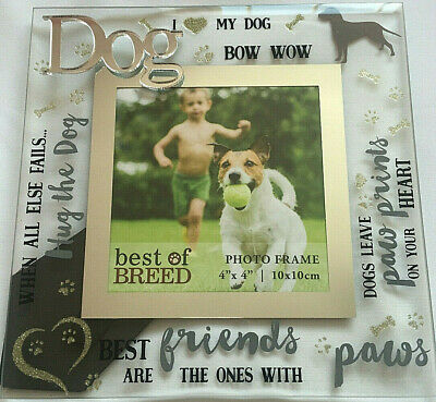 Quality Glass Photo Picture Frame I Love My Dog Frame Gifts Presents (Best Quality Glasses Frames)