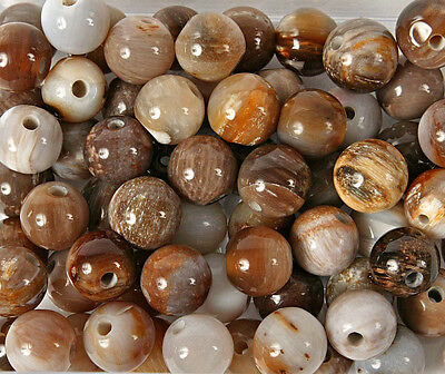Pack of 10 x 12mm Fossil Wood Beads for Jewellery Making (BW28)