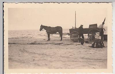 (F17081) Orig. Foto Trassenheide, Fischhändler m. Pferdefuhrwerk am Strand 1936