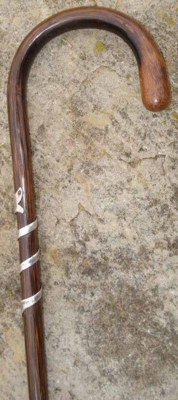 Walking Stick Delicate Cane Dandy