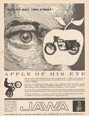 1962 Jawa ''Apple of His Eye'' World's Best Two-Stroke - Vintage Motorcycle (Best Two Stroke Motorcycles)