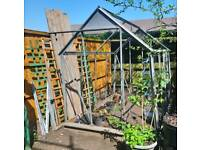 Greenhouse frame 8x6 foot
