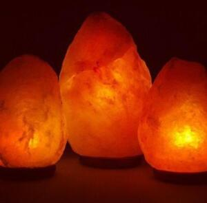 "Himalayan Salt Lamps  10  to 12 Pound ""Best online Deal "" Free Shipping"""