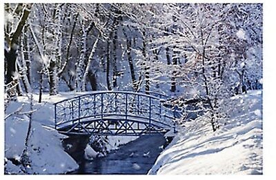 Winter Wonderland Backdrop FROZEN WINTERLAND Wall Mural PROP LARGE NICE NEW