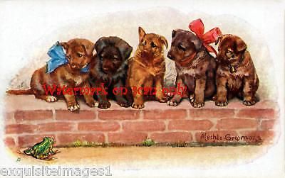 (Vintage Art~Cute German Shepherd Dog Pups~Frog~ NEW Large Note Cards)