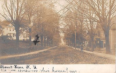 1906 Rppc Residential Street Mt  Kisco Ny Westchester County