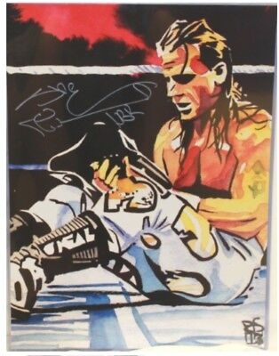 Print WWE NWA WCW WWF NWO Surfer Autographed Sting 18 x 24 Poster